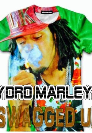 Hydro Marley