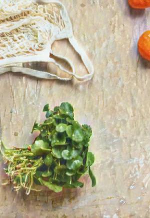 Thomas May