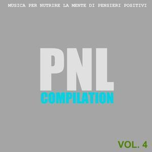 PNL Compilation, Vol. 4