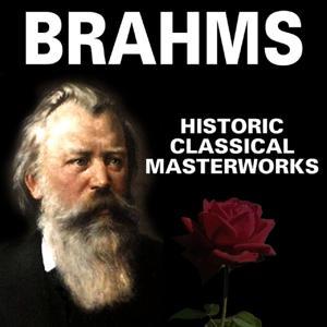 Die grossen Meister der Klassik (Johannes Brahms)