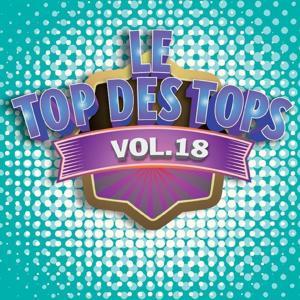 Le Top des Tops des années 80 / 90, Vol. 18