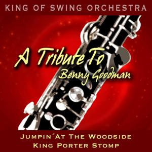 A Tribute to Benny Goodman (Jumpin' At the Woodside / King Porter Stomp)