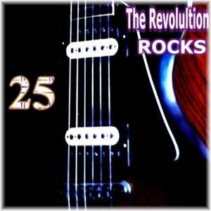 Rocks, Vol. 25
