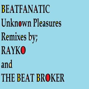 Unknown Pleasures (Remixes 2)