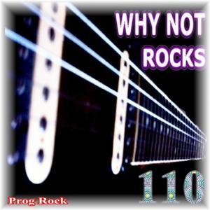 Rocks, Vol. 110