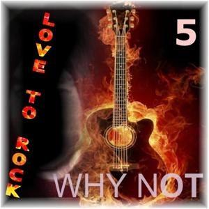 Love To Rock, Vol. 5
