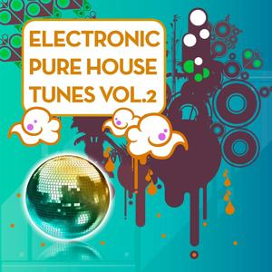 Electronic Pure House Tunes Vol.2