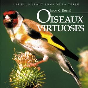 Oiseaux virtuoses
