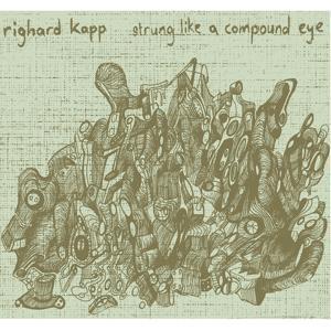 Strung Like a Compound Eye