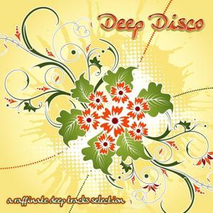 Deep Disco - Workbench