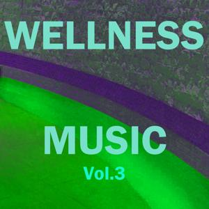 Wellness Music, Vol. 3