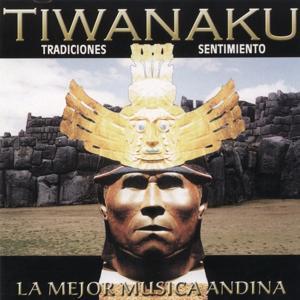 Traciones Sentimiento (La Major Musica Andia)