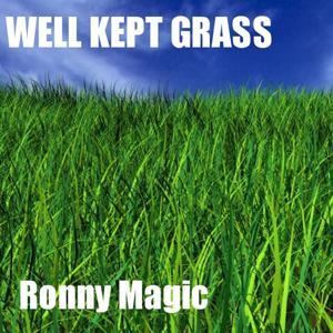 Well Kept Grass