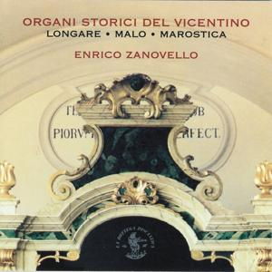 Historical Organs of Vicenza Province (Italy)