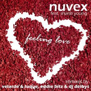 Feeling Love (The Remixes)