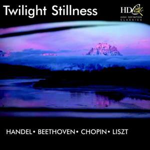 Twilight Stillness