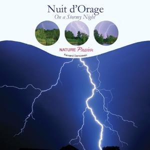 Nuit d'orage (Stormy Night)