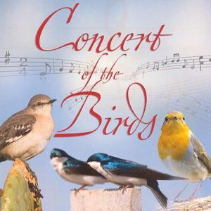 Concert Of The Birds