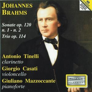 Johannes Brahms : Sonate Op. 120: No. 1, No. 2 / Trio Op. 114