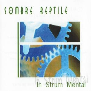 In Strum Mental