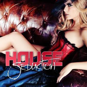House Seduction
