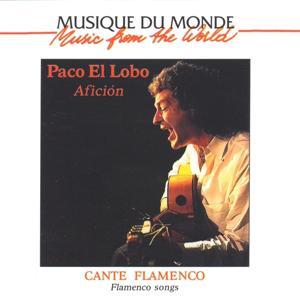 Musique du monde : Cante Flamenco, Afición