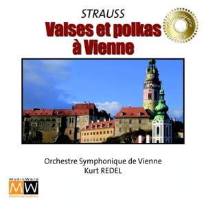 Valses et Polkas à Vienne