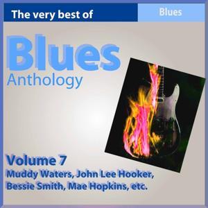 Blues Anthology, Vol. 7