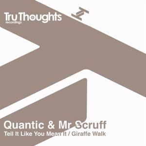 Tell It Like You Mean It / Giraffe Walk