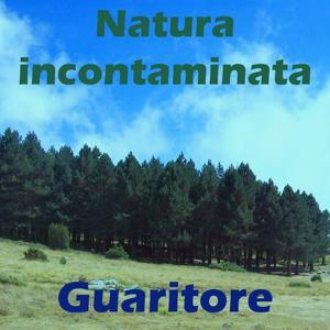 Natura incontaminata