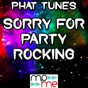 Sorry for Party Rocking - Mixes Tribute to LMFAO