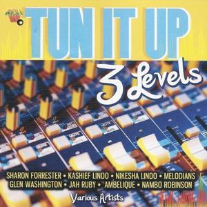Tun It Up (3 Levels)
