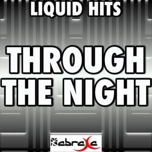 Through the Night (A Tribute to Drumsound and Bassline Smith)