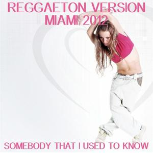 Somebody That I Used to Know (Reggaeton Version Miami Remix 2012)