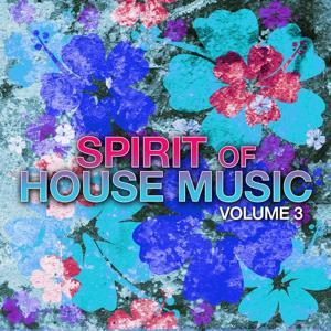 Spirit of House Music, Vol. 3
