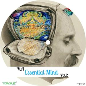 V.A Essential Mind, Vol.2
