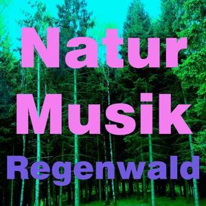 Natur musik