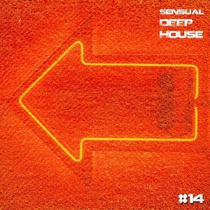Sensual Deep House #14