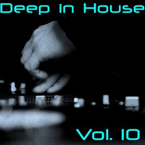 Deep in House Vol. 10
