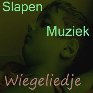 Slapen muziek (Vol. 2)