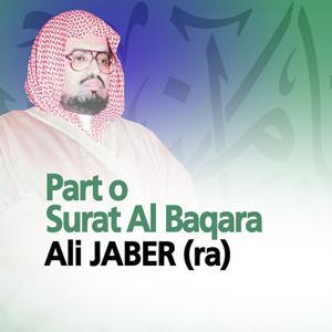 Part of Surat Al Baqara (Quran - Coran - Islam)
