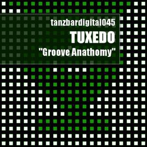 Groove Anathomy