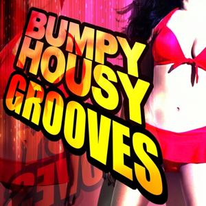 Bumpy Housy Grooves