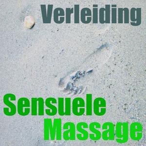 Sensuele massage (Vol. 3)