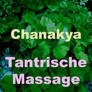 Tantrische massage (Vol. 1)