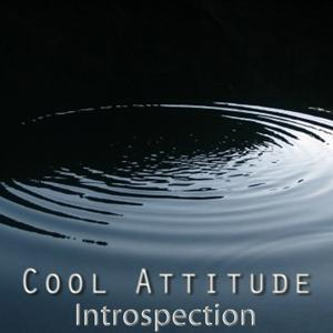 Cool Attitude: Introspection