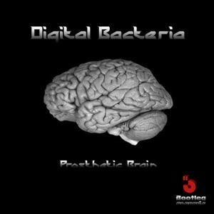 Prosthetic Brain