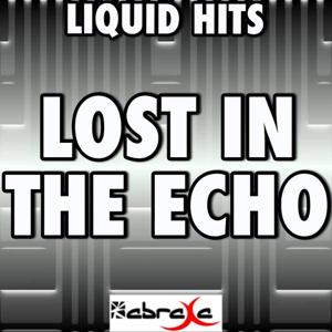 Lost in the Echo - A Tribute to Linkin Park