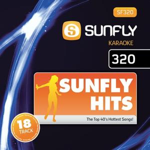 Sunfly Karaoke Hits 320