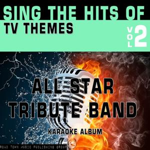 Sing the Hits of TV Themes, Vol. 2